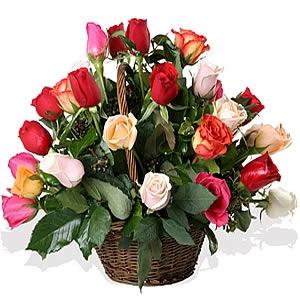 buchet-de-trandafiri-sweet-dream-8262-1