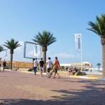 palmieri artificiali pentru plaja si terase