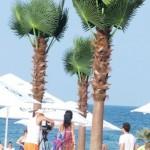 amenajare plaja Mamaia, Constanta