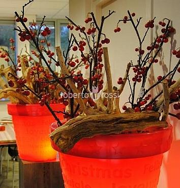 bloom-suport-pom-de-craciun-50-cm-rosu-rr-x-mas-13981-4