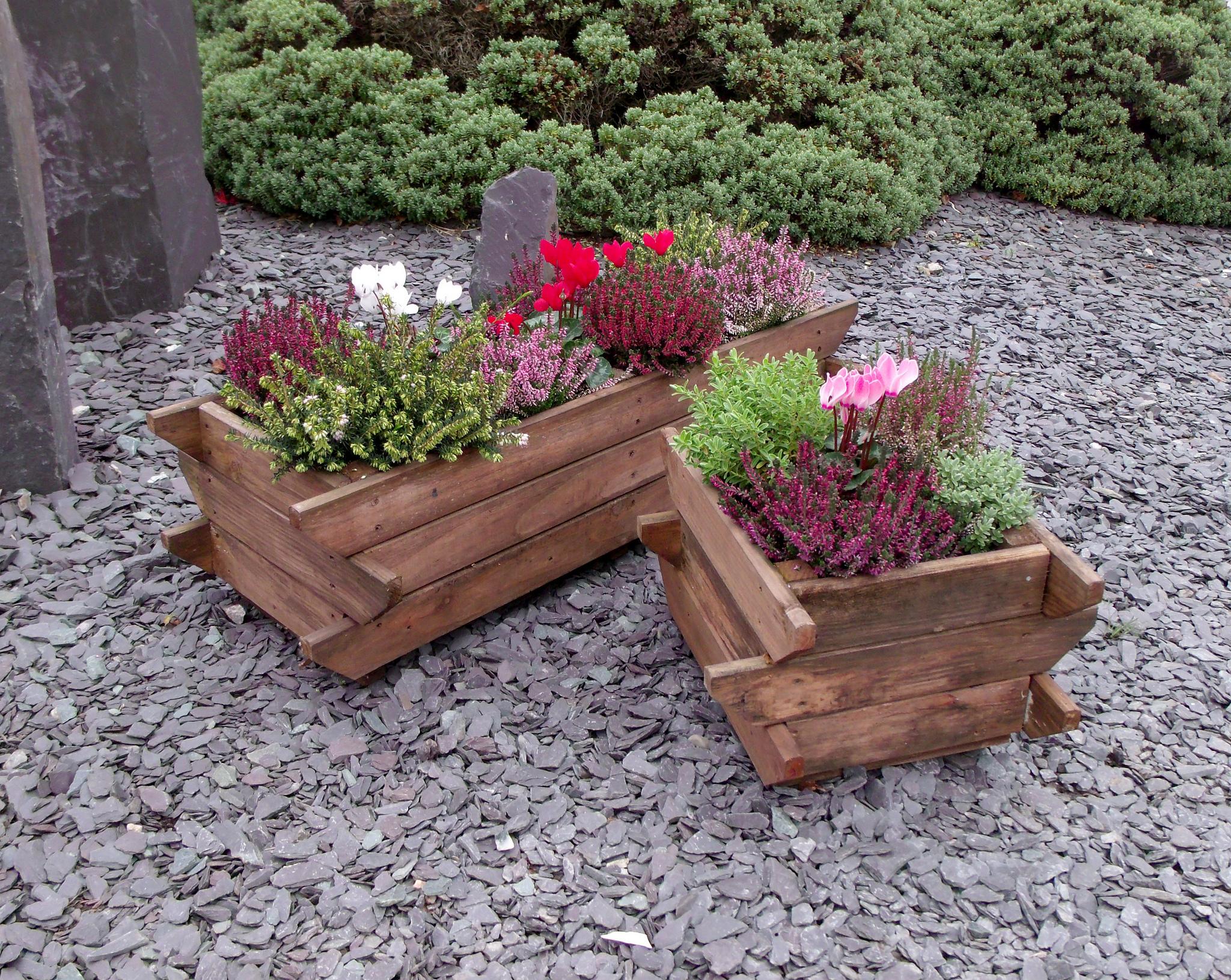 Jardiniere din lemn pentru plante de toamna si iarna