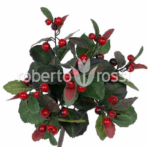 fructe-de-padure-28-cm-berry-31461-1