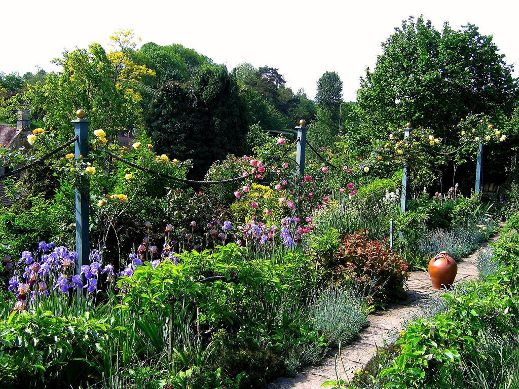 Gradina frumoasa cu plante fertilizate