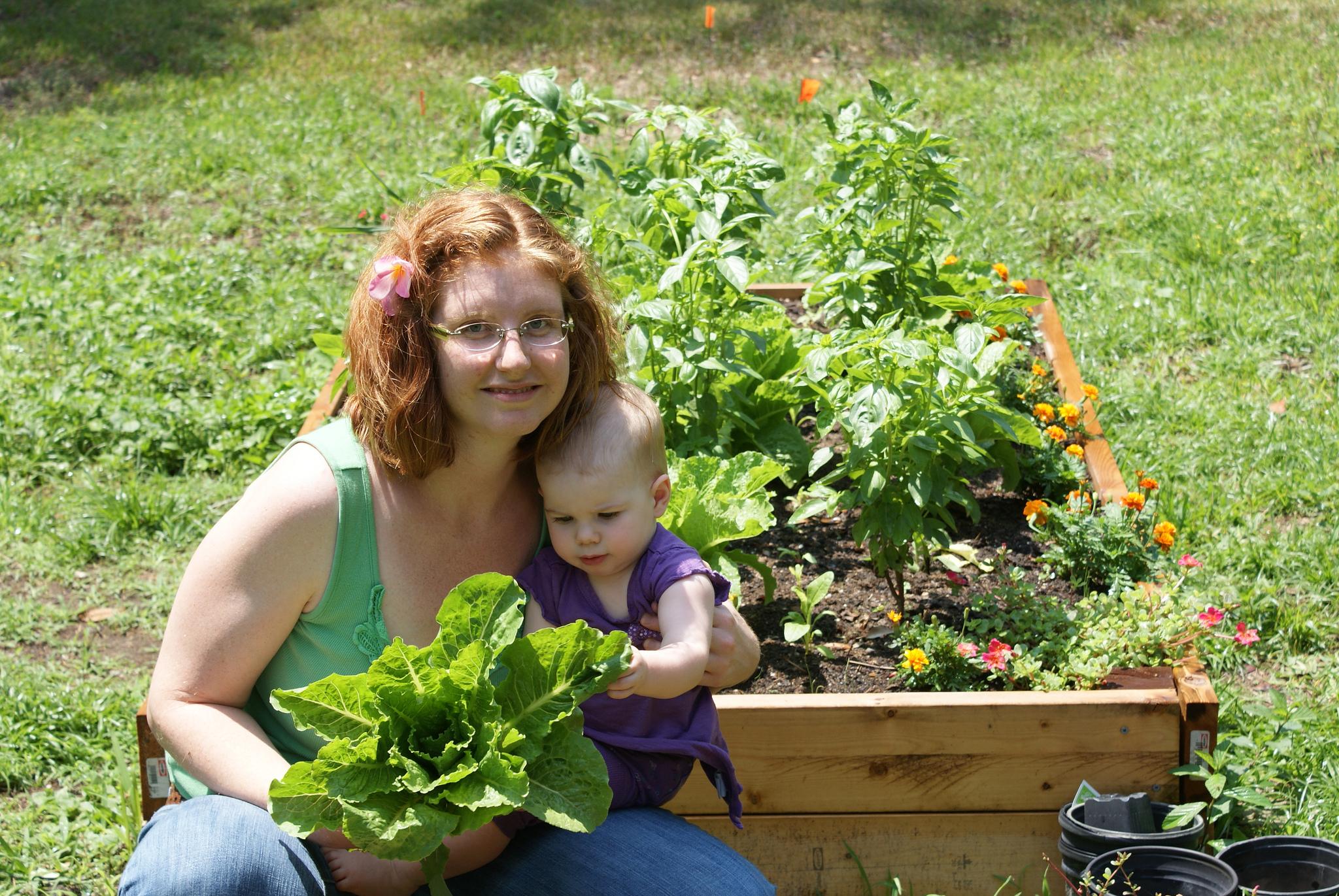 Si legumele au nevoie de ingrasaminte
