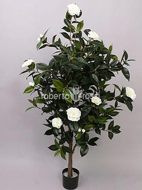 Camellia Japonica artificiala