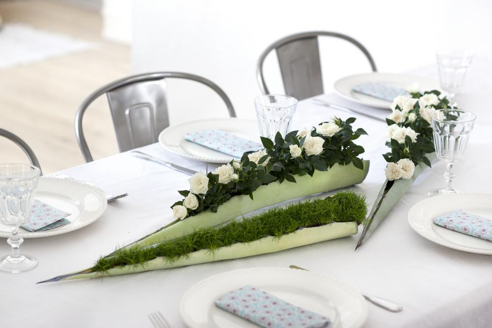 Aranjament cu plante la ghivece