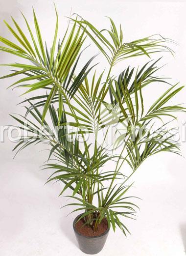 palmier-kentya-150-cm-31156-1