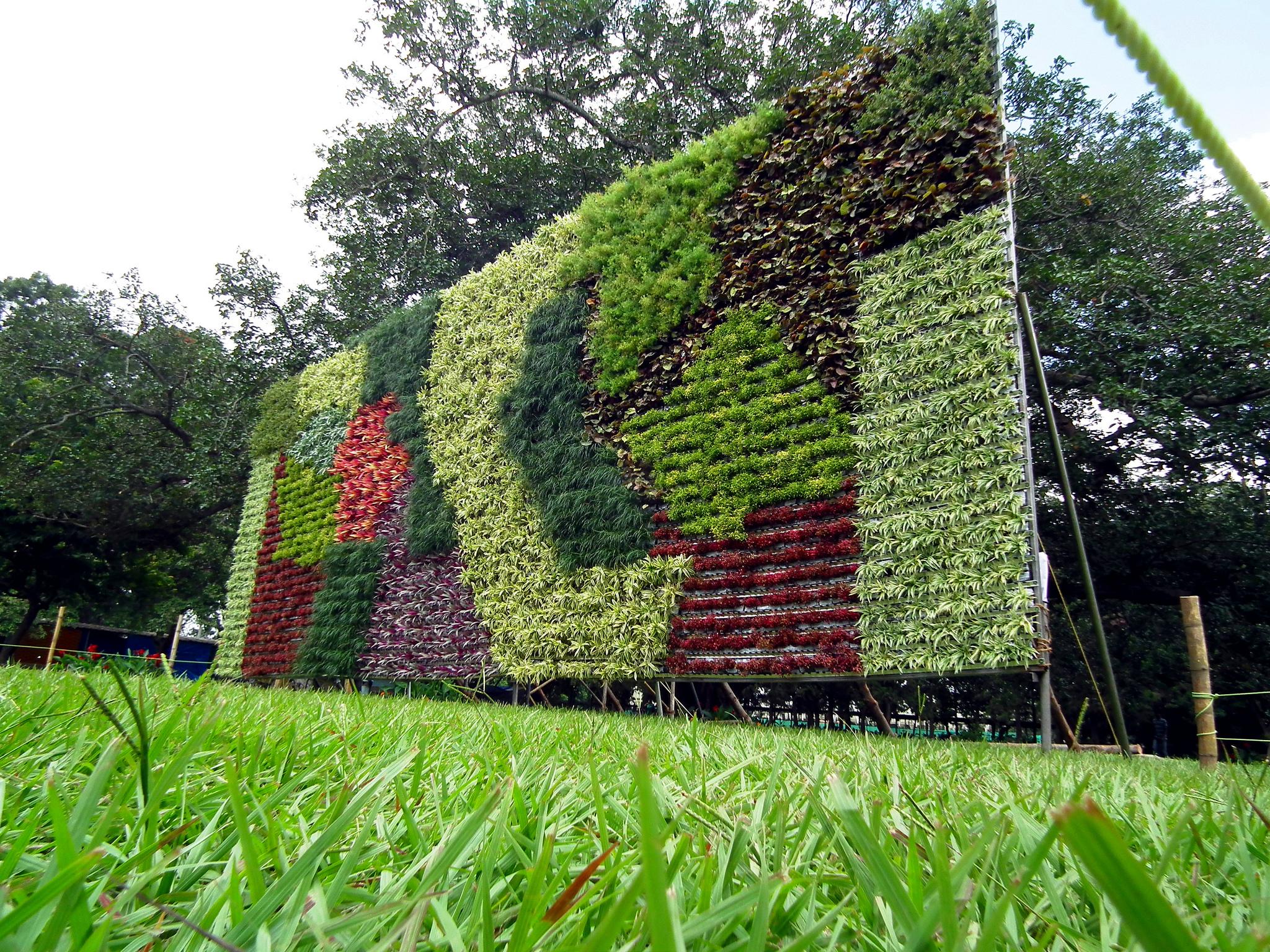 Perete vegetal mozaicat