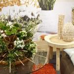 Ce-ţi trebuie ca să poţi îngriji corect florile şi plantele de interior?