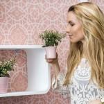 Amenajări de primăvară în casa ta