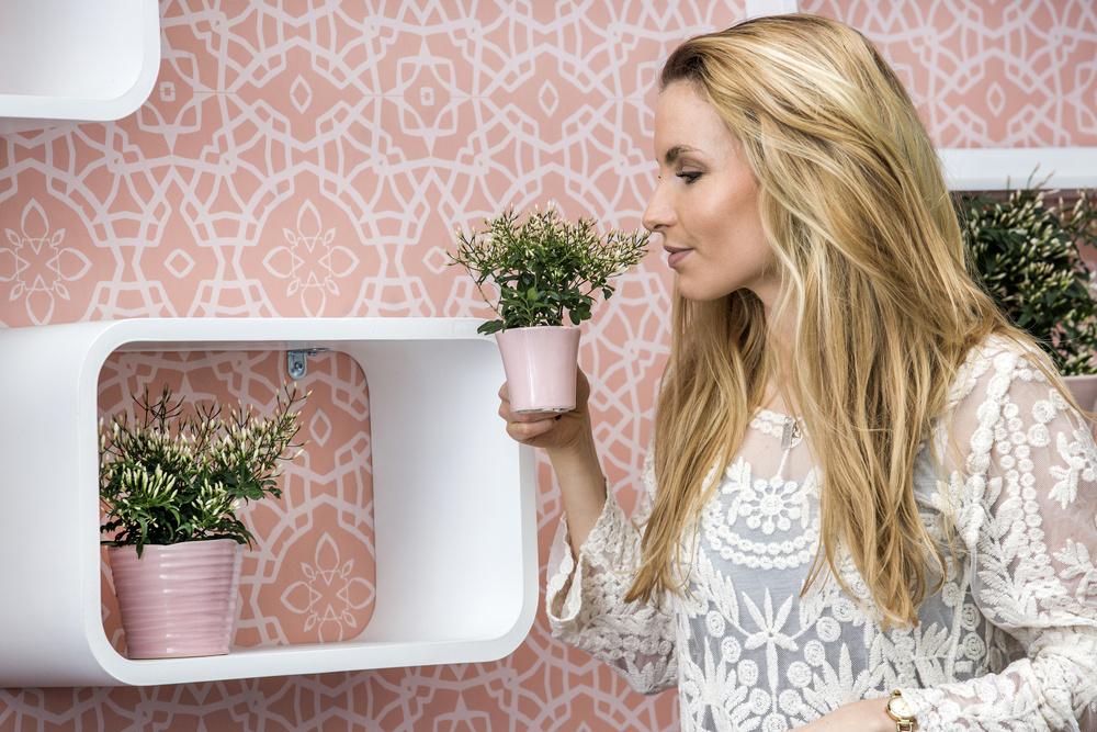 Fa-ti un decor cu plante naturale