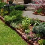 Primăvară în grădină