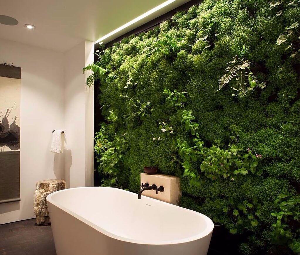 Perete vertical cu plante vii in baie