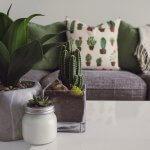 Cum să decorezi interiorul casei tale cu plante artificiale?